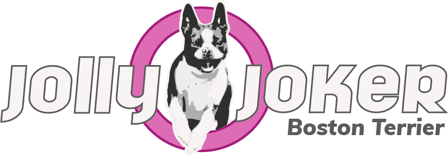 Jolly Joker - Logo Retina